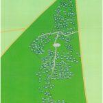 Die Baumkarte in der Waldruhestätte Meerbusch